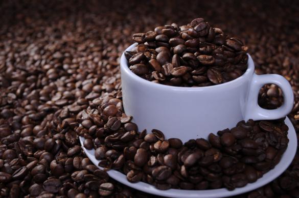 cafe2-1